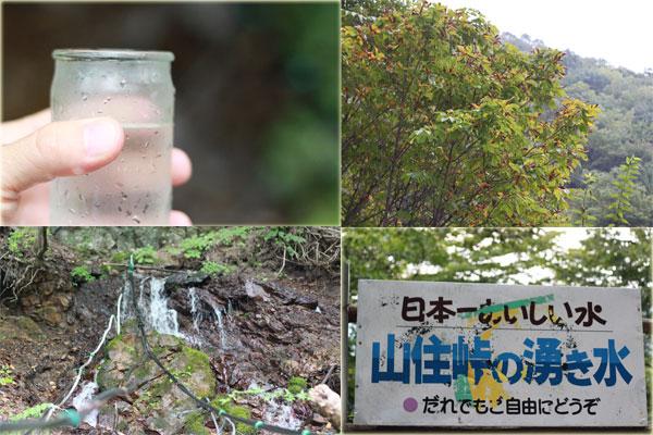 blog2010tochi-3