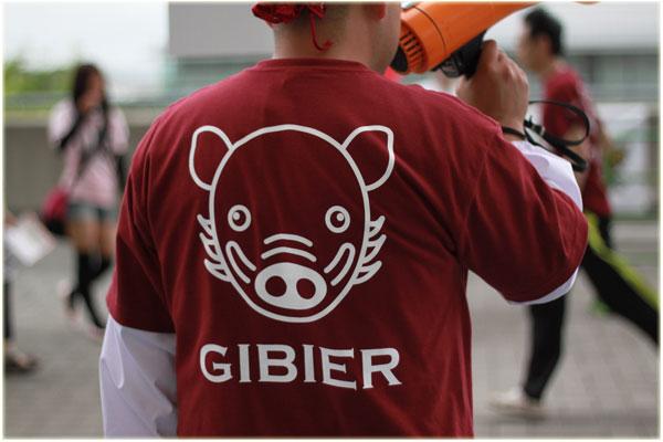 blog2011gibie2